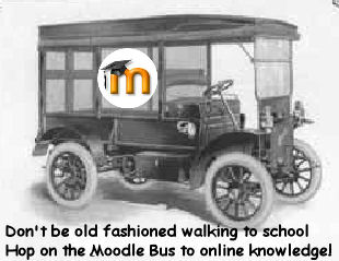 Hop on the moodle bus!